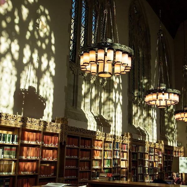 glowing interior of the Starr Reference Room in Sterling Memorial Library⁣